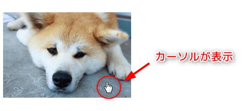 画像にしっかりリンクが貼られているかブラウザで確認